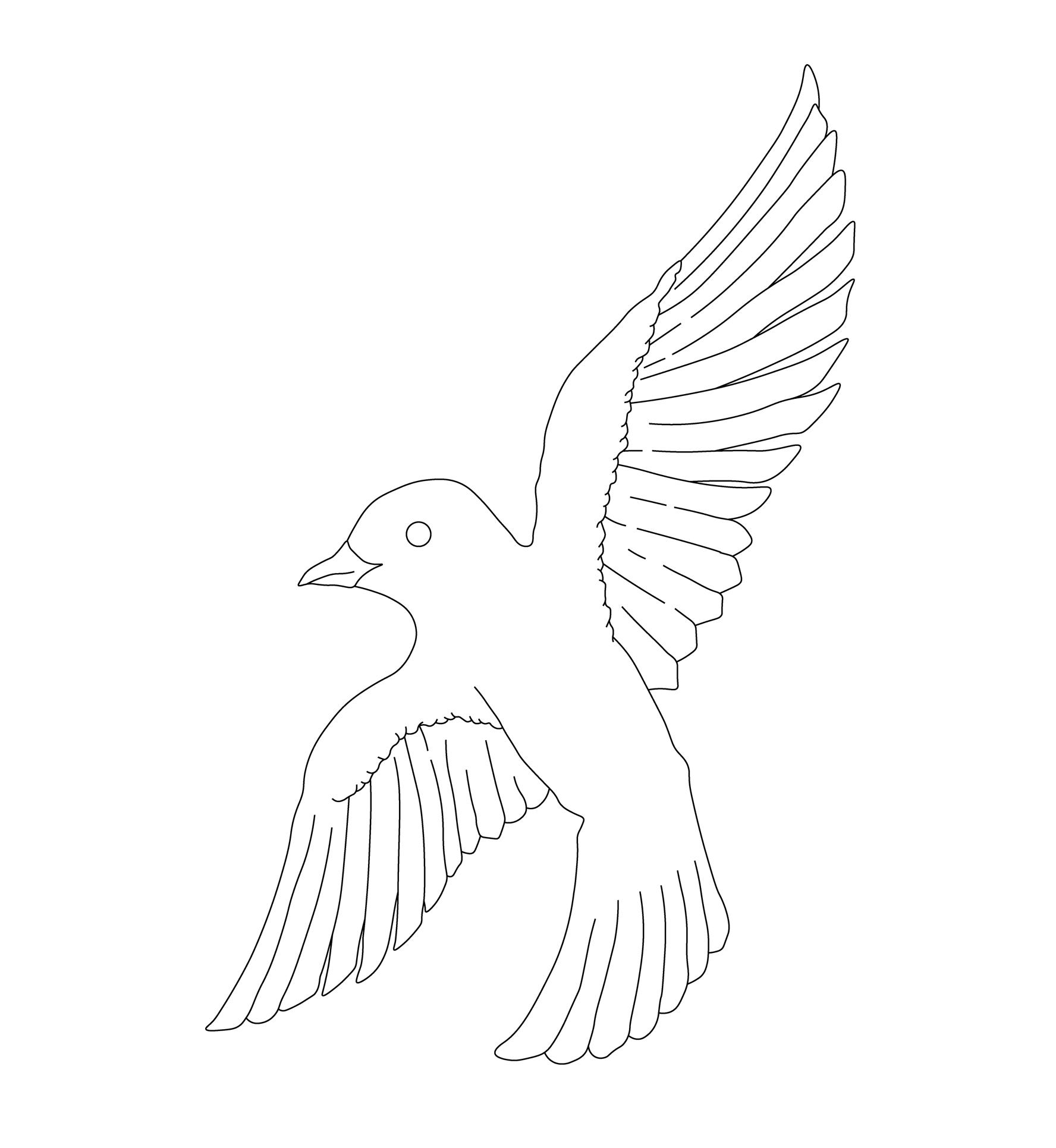 hand-drawn-dove-illustration-1