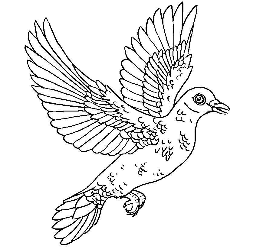 religious-dove-drawings