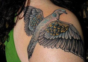Realistic Dove Tattoo
