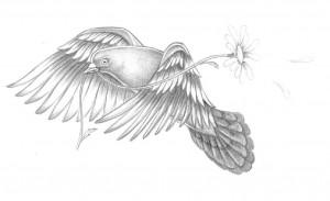 bird pigeon tattoo