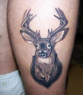 Realistic Mounted Deer Tattoo