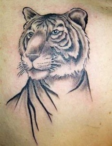 Portrait Style White Tiger Tattoos
