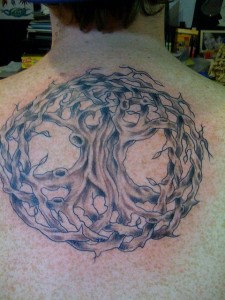 Tree of life (Celtic knot tree)