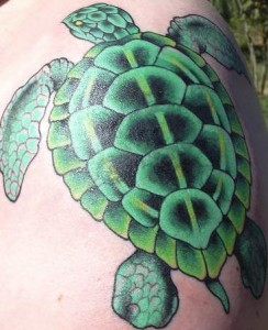 Realistic Turtle Tattoo