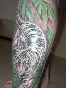 White Tiger Tattoos in Natural Habitat
