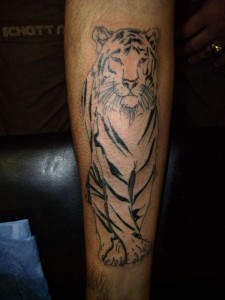 Forearm White Tiger Tattoo