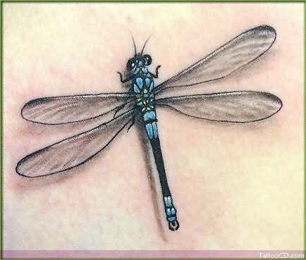 15 stunning dragonfly tattoos tattoo me now. Black Bedroom Furniture Sets. Home Design Ideas