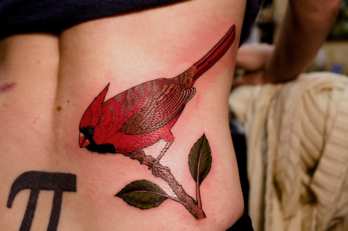 bird tattoo on pelvis
